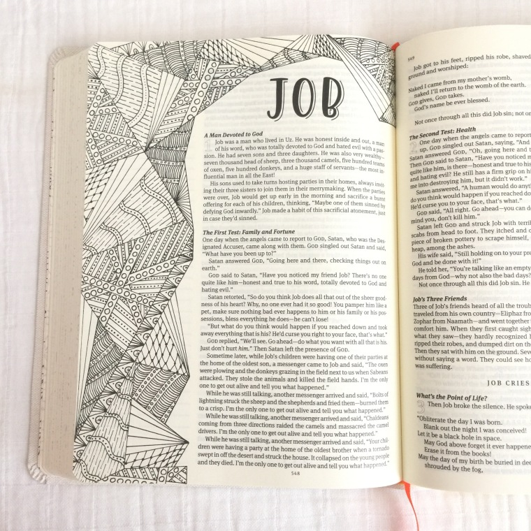 The Message Canvas Bible [Review] – Kountingsheep
